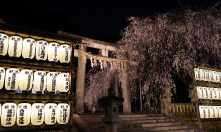 Kyoto, Yamashina Ward & Oishi Shrine, Sakura 2021
