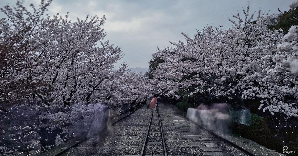 Kyoto, Keage Incline, Sakura 2021