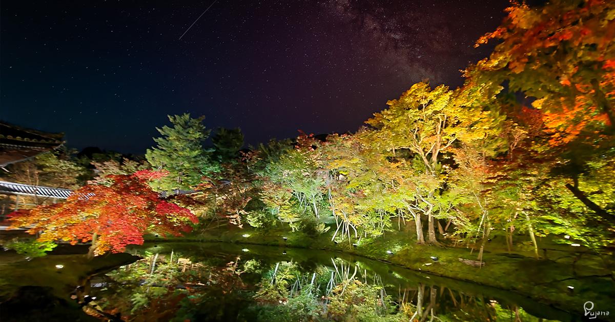 Kyoto, Kodaiji in autumn