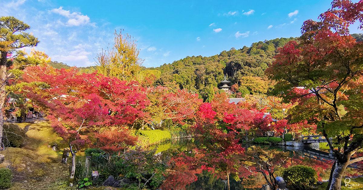 Kyoto, Eikan-do Zenrin-ji Temple (永観堂禅林寺) in Autumn