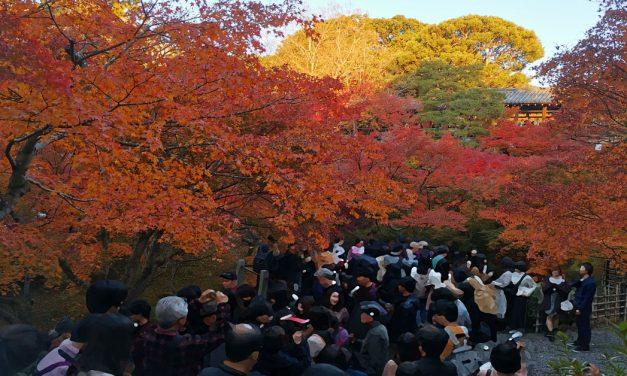 Kyoto, Tofukuji Temple (東福寺) in Autumn