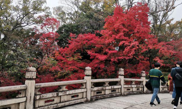 Kyoto, Otani Hombyo (大谷本廟) / Nishi Otani (西大谷) in Autumn