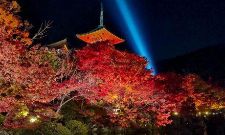 Kyoto, Kiyomizu-dera (清水寺) Lightup in Autumn 2019